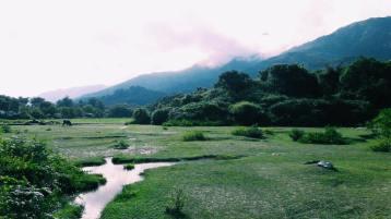 下午 從大帽山腳下的八鄉,來到鳳凰山腳下的貝澳,拍攝政綱片。
